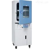真空干燥试验箱(程序液晶控制器)