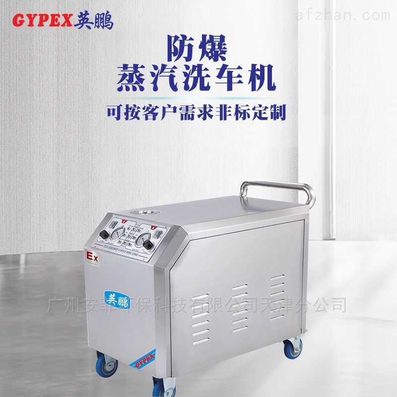 防爆工业蒸汽洗车机