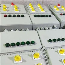 BXMD1总10分防爆照明动力配电箱