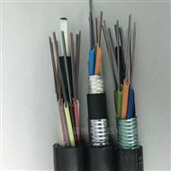 GYFTZY非金属阻燃光缆