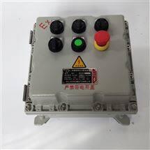 粉尘防爆照明动力配电箱