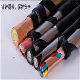 ZR-BPVVP屏蔽电缆4*16阻燃变频电缆