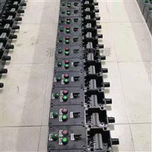 BXK复合型防爆防腐操作柱