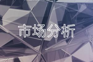 《2021年中��人工智能芯片�a�I全景�D�V》