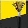 WDZR-HPYY 10×2×0.5阻燃局用电缆